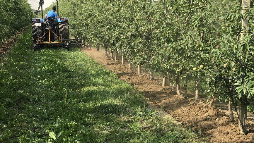 Земляные работы – подготовка ландшафта сада